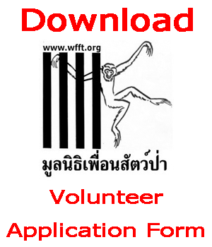Download a Volunteer Application Form
