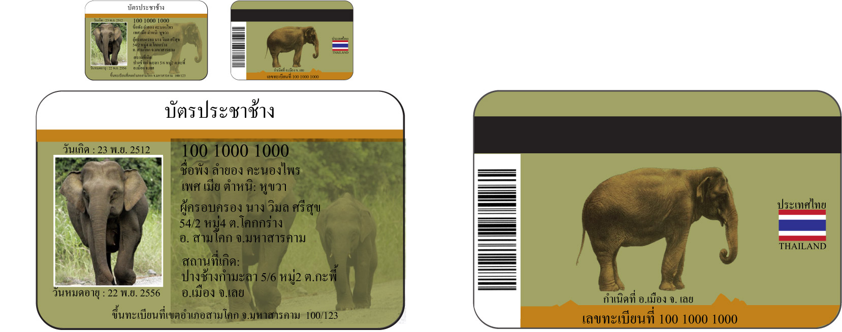 Elephant ID smart-cards as introduced and supported by WFFT