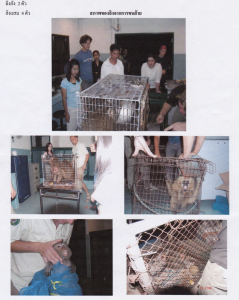 A Department of National Parks officer dumps wild animals at the WFFT wildlife rescue center close to midnight in 2004, some in bags. The officer did not leave any paperwork behind and a few days later Edwin Wiek fo the WFFT was arrested for illegal possession of wildlife, clearly a set-up.