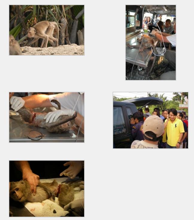 Screen Shot 2012-12-13 at 19.54.56