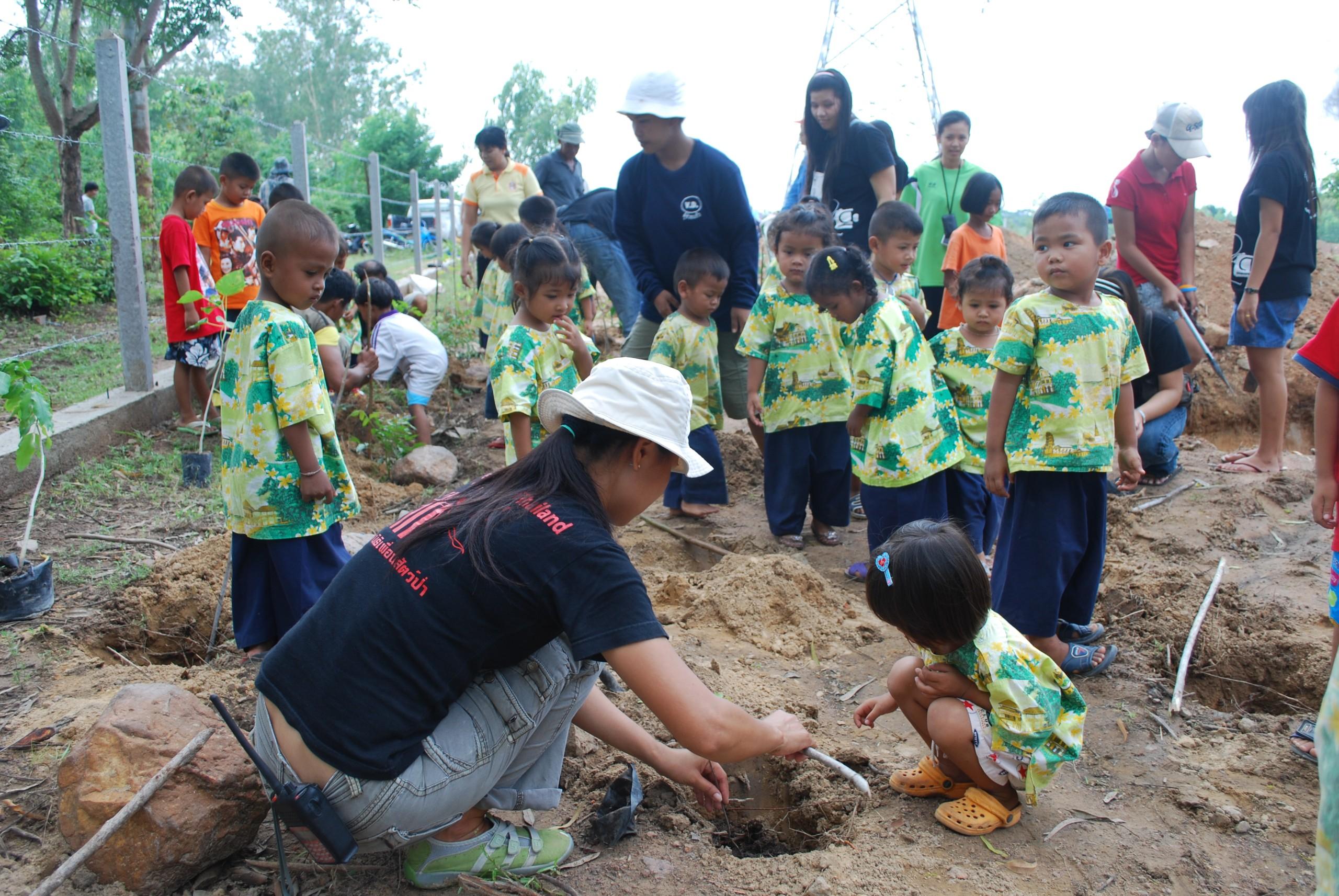 Forest Restoration And Conservation