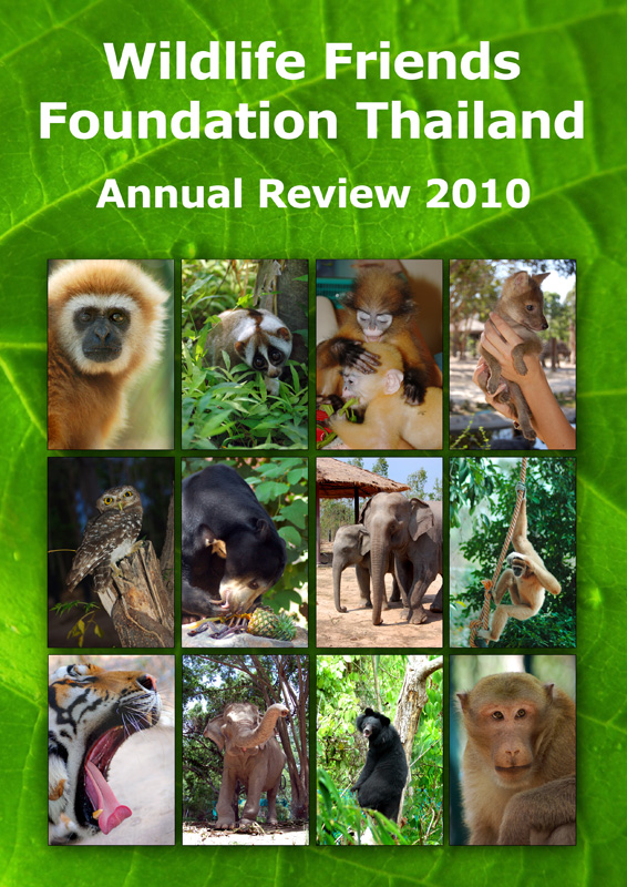 WFFT Annual Review 2010 1