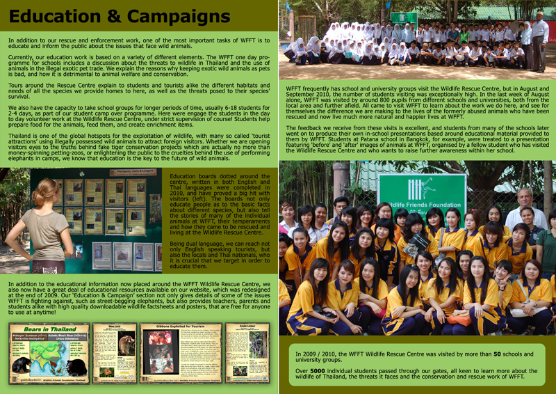 WFFT Annual Review 2010 12
