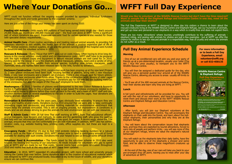 WFFT Annual Review 2010 16