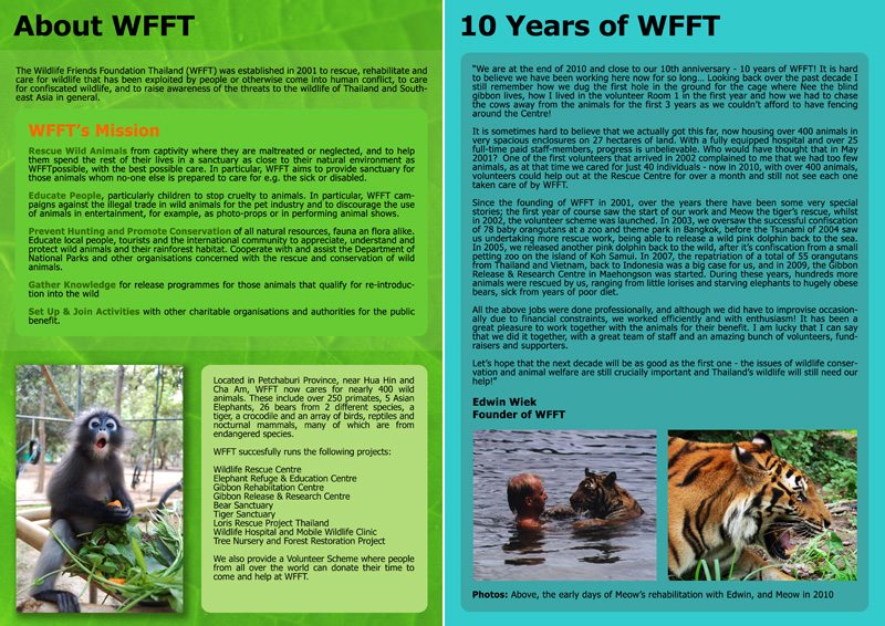 WFFT Annual Review 2010 2