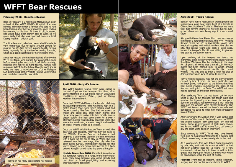 WFFT Annual Review 2010 6