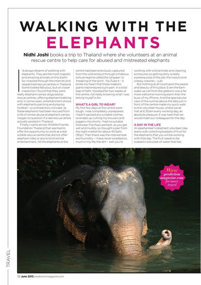 Walking with elephants - Wildlife Friends Foundation Thailand