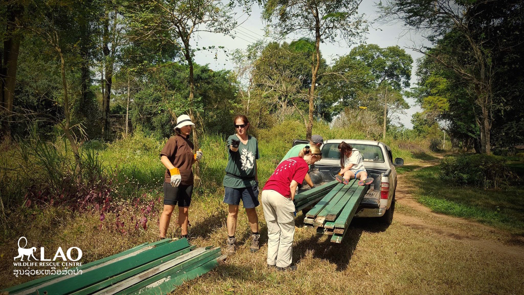 Working out the best way to load the recycled timber for new bear climbing structures