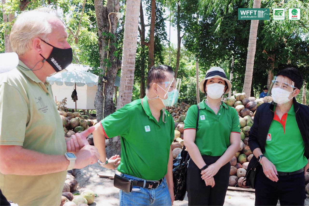 Collaborating To Help Coconut Monkeys
